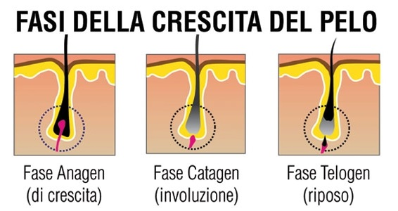 Epilazione laser quando i peli iniziano a cadere